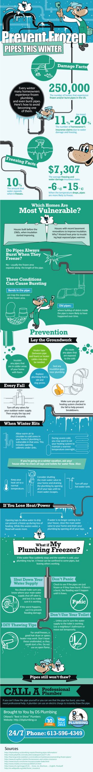 How to Prevent Frozen Pipes This Winter Infographic