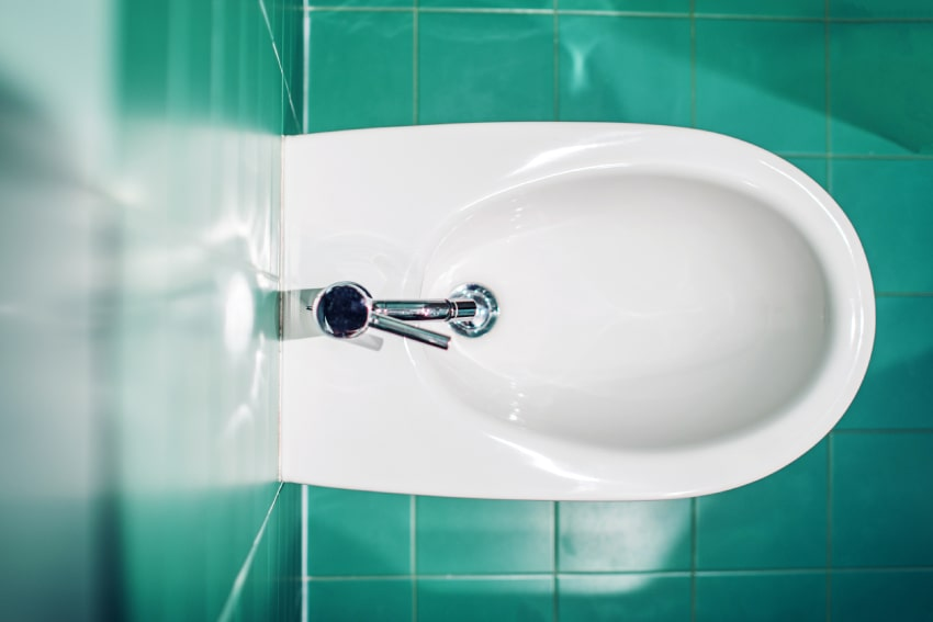 Are Bidets Worth It? A picture of a bidet fixture